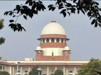 Don't play with court orders, SC tells young IAS officer   India