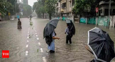 Chennai weather: Tamil Nadu govt directs district collectors