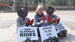 Start 2019 with the end of elephant rides, appeals PETA India founder in Jaipur