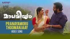 Madhaveeyam   Song - Pranayamoru Thoomanjaay