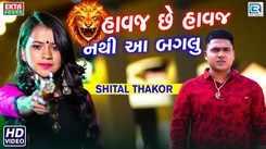 Latest Gujarati Song Havaj Chhe Havaj Nathi Aa Baglu Sung By Shital Thakor
