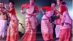 Northeastern Cultural festival adds colour to SH College's philanthropic event