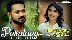 Vijay Superum Pournamiyum   Song - Pakalaay