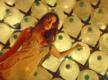 Jai Veeru Teaser - Ruhi Singh, Prince Narula, Suyyash Rai