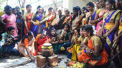 Pongal celebrations at MGR Janaki College of Arts and Science for Women