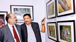 Wildlife photography exhibition gets a thumbsup from art lovers in Lucknow