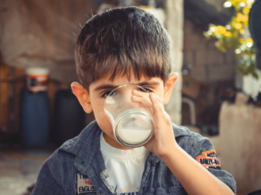 Is milk important? This guide says otherwise