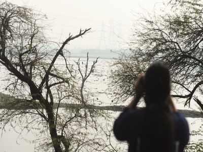 bedste dating steder i delhi gratis dating sites waterloo
