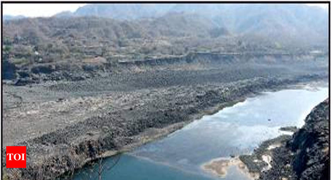 Gujarat government claims decaying matter polluted Narmada