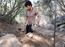 Putta Gowri Madve written update, February 05, 2019: Surya wants to bury Mangala