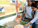 Farmers made the most of agriculture exhibition