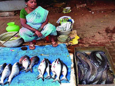 Banned invasive African catfish thrive in Coimbatore lakes