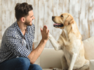 Dogs' personalities change over time just like humans