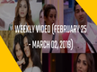 Weekly Video (February 25 - March 02, 2019)