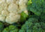 Cauliflower Vs Broccoli: Which vegetable has more nutrient content