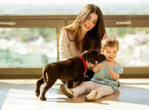 These household cleaners are safe for both your baby and your pet
