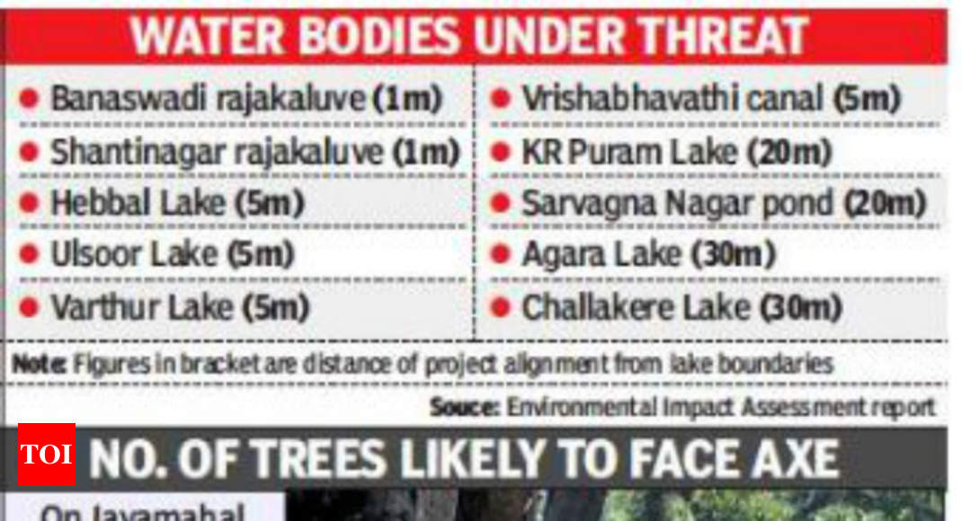 Elevated corridor likely to affect buffer zones of 10 water
