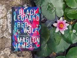 Micro review: 'Black Leopard, Red Wolf' by Marlon James