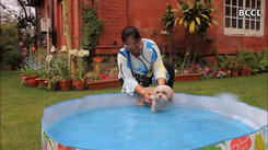 Nagpur's pet pooches are pampered with waterbeds, tiny pools and frozen treats