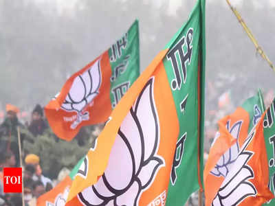 Odisha BJP candidate list 2019: BJP releases list of 9 more