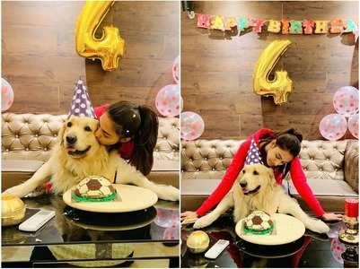 Erica celebrates her dog Champ's bday