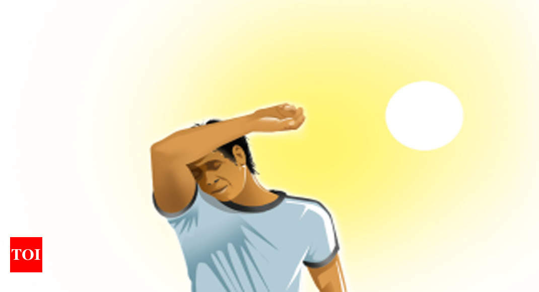Centre Wants Delhi To Form Heatwave Action Plan   Delhi News