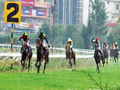 Horse Racing Tomorrows Meetings