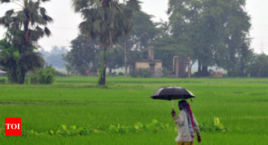 Monsoon to be 'near normal' at 96%: IMD