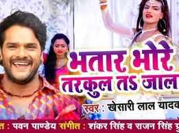 Watch: Khesari Lal Yadav's latest Bhojpuri Song 'Bhataar Bhore Tarkul TS Jaala'