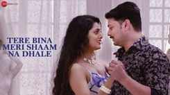 Latest Hindi Song 'Tere Bina Meri Shaam Na Dhale' Sung By Vikram Kumar