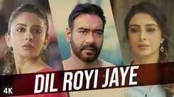 De De Pyaar De | Song - Dil Royi Jaye