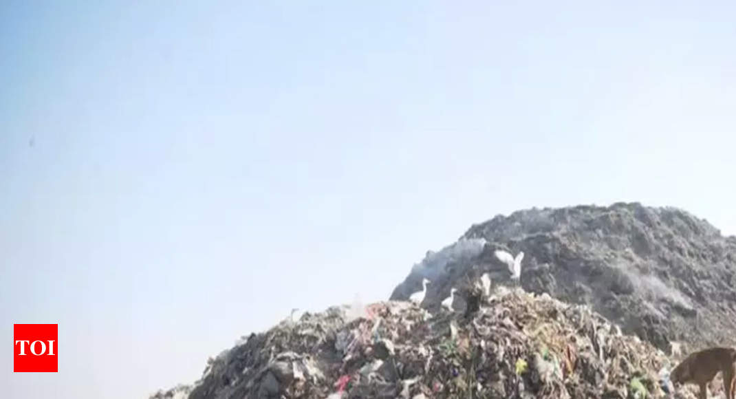 561 contractors in race to clear B'luru garbage