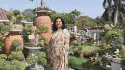 Lucknowite Rashmi Vaid's terrace garden will surely win your heart