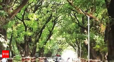 Tree Ambulance launched in Chennai | Chennai News - Times of India