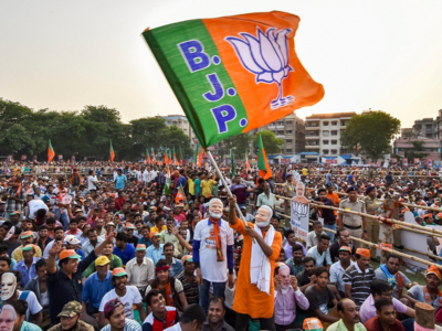 Bengal: BJP eyes assembly election after spirited