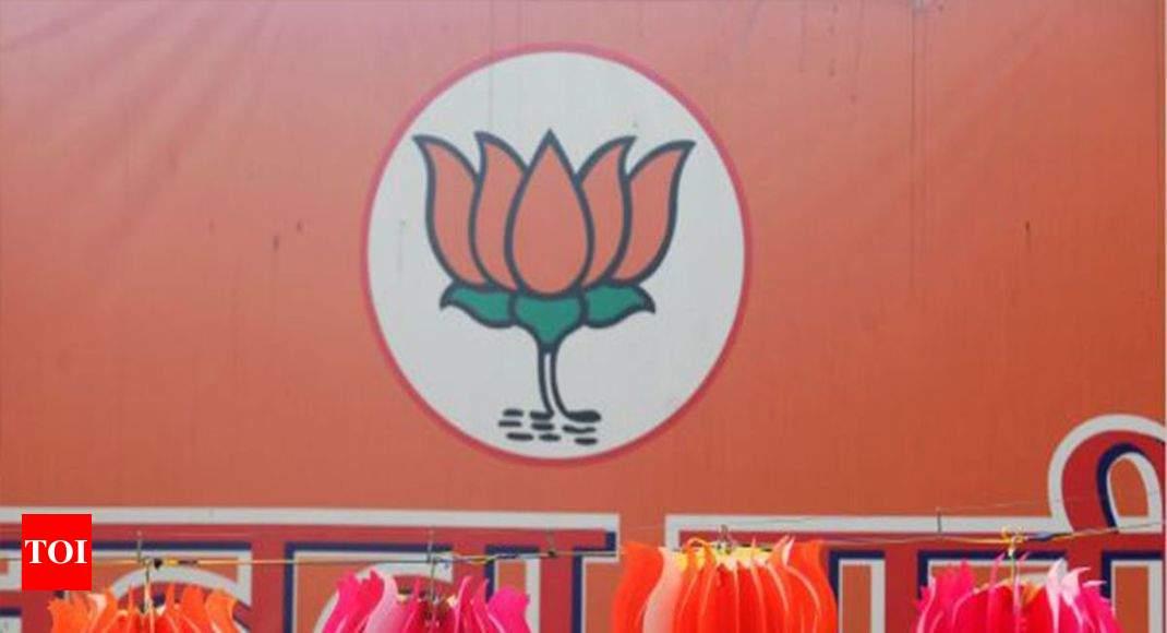 BJP's mammoth margins lay in Gujarat