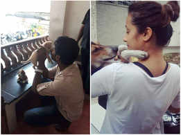Celebs who have adopted strays