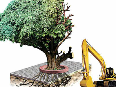 9,000 trees may be axed for road project in Hyderabad