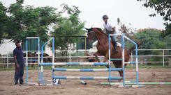 Alexander Equestrian Club riders who got awards recently shows jumping skills