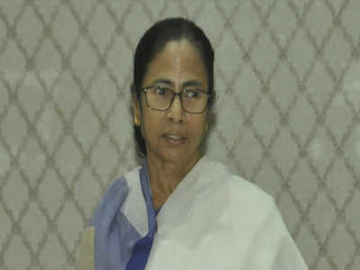 Bengalis in Jamshedpur pained over Didi's language remark