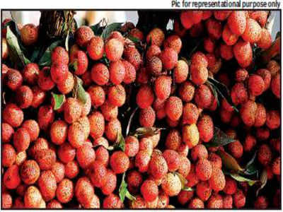 Jaipur: Litchi demand falls after AES hysteria | Jaipur News