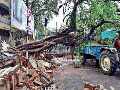 793aa32fda454 Ahmedabad: Sunday squall exposes all | Ahmedabad News - Times of India