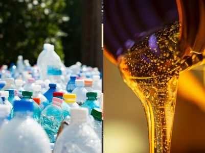 World Environment Day 2018: Theme, Logo, Slogans & Essay - Times of