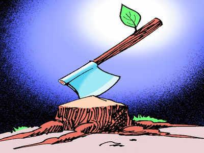 BMC invites feedback on Aarey Colony trees to be cut