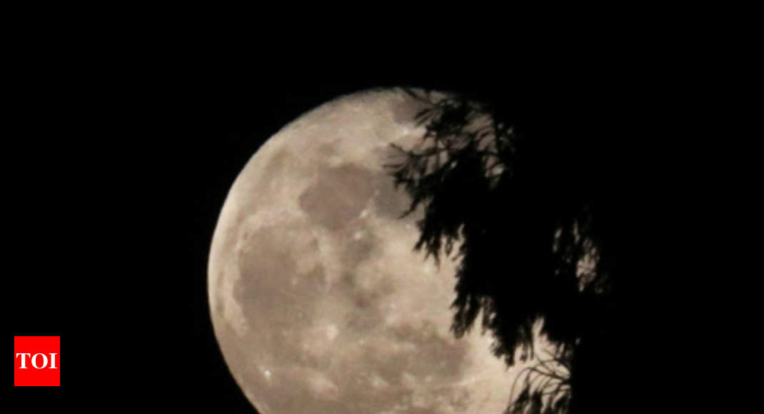 Next task on Moon: To protect artefacts left by lunar missions - Times of India thumbnail