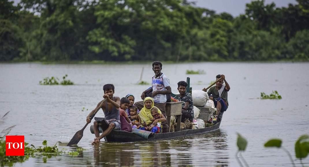 Assam floods: 70% of Kaziranga National Park submerged, animals taken to highlands - Times of India thumbnail