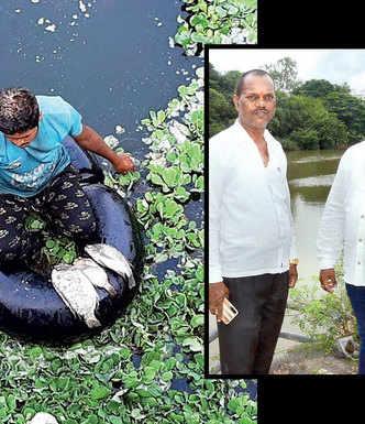 Indrayani model to make Pavana free of water hyacinth