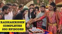 RadhaKrishn completes 250 episodes, Sumedh Mudgalkar, Mallika Singh and others celebrate