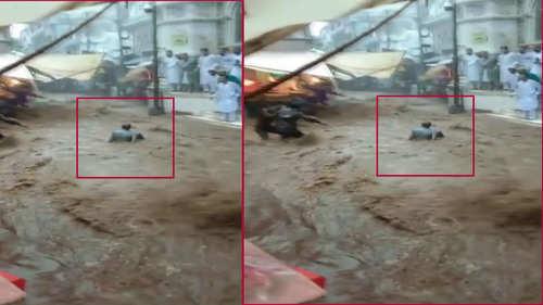 Jaipur News, Latest Jaipur News Headlines & Live Updates - Times of