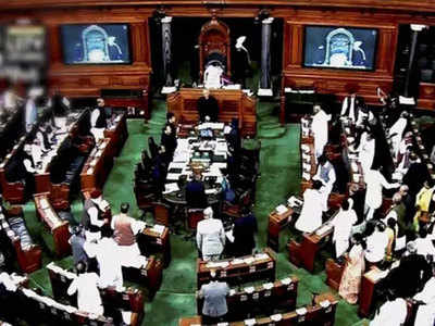 Lok Sabha passes Surrogacy Bill   India News - Times of India